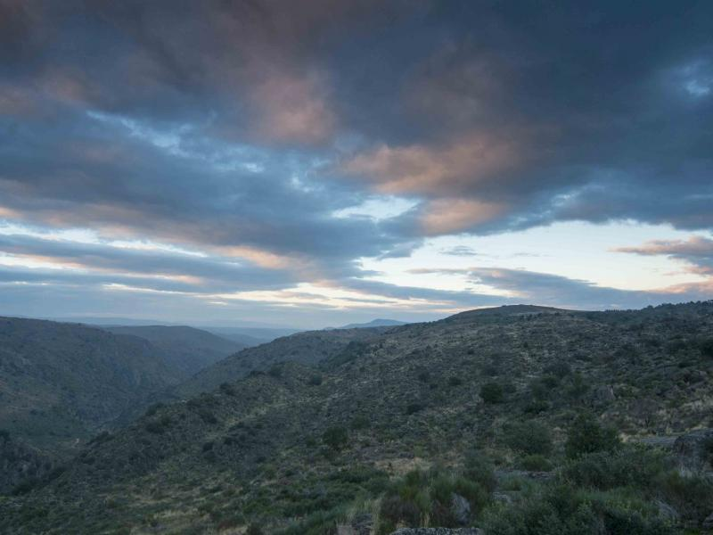 Panorama da Reserva da Faia Brava